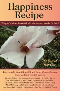 Happiness Recipe - The Book! - The Happiness Recipe