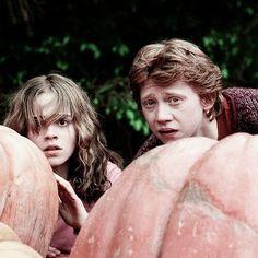 Love Harry Potter #HarryPotter #HarryPotterForever