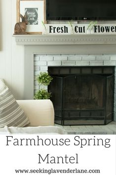 Farmhouse Spring Man