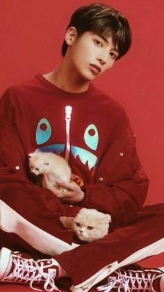 <Cat & Dog> Official Teaser '멍' version K Pop, Hip Hop, The Dream, K Idols, South Korean Boy Band, Teaser, Mini Albums, Boy Groups, Namaste