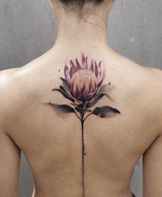 a0824ea4d 24 Best Protea Tattoo images in 2018 | Protea art, Protea flower ...