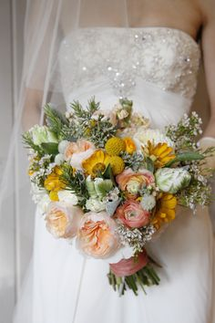 incredible mix of craspedia, waxflower, eucalyptus seed, parrot tulips, stock, ranunculus, cosmos(?), button mums, football mums, & old fashioned roses