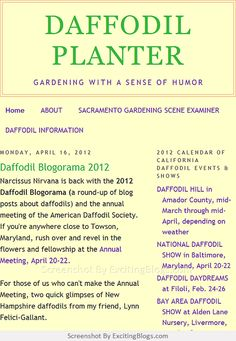 2012 Calendar, Gardening Blogs, Garden Planters, Daffodils, Humor, Cheer, Flower Planters, Daffodil, Garden Container