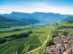 Bolzano/Bozen in South Tyrol Hotels, South Tyrol, Sicily Italy, Mountain Landscape, Places To See, Vineyard, Golf Courses, Things To Do, Scenery
