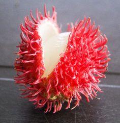 surinaamse fruitsoorten
