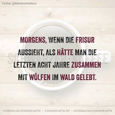 Favorite Quotes, Best Quotes, Funny Quotes, Word Pictures, Funny Pictures, Not My Circus, German Quotes, Status Quotes, Sarcasm Humor
