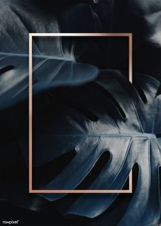 Golden frame on a tropical background Tropical Background, Plant Background, Background Images, Pattern Background, Instagram Png, Photo Instagram, Framed Wallpaper, Screen Wallpaper, Backgrounds Free