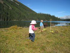 Family Adventures in the Canadian Rockies: Best Toddler/Preschooler Hikes Lets Do It, Canadian Rockies, Family Adventure, Activity Games, Banff, Activities For Kids, Preschool, Hiking, Children
