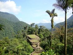 The lost city of Teyuna #Colombia can only be accessed by climbing 1,200 steep stone steps (Twitter @ HiddenJourneys)