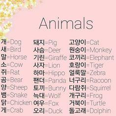 Korean Language 839499186773575694 - Source by lamialialili Korean Slang, Korean Phrases, Korean Quotes, Korean Verbs, Learn Basic Korean, How To Speak Korean, Korean Words Learning, Korean Language Learning, Language Study