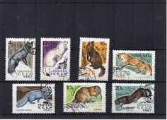 Russian vintage used postage stamp set from 1967 animals arctic fox, red fox, stoat, sable, muskrat and mink. Craft supply, art project or collecting. Scan enlarged to show detail. Please note this is a stock image.  Stamps will be sent securely packaged in a small envelope to fit through your letterbox. Pay only one P&P charge no matter how many items you purchase in one order. Display card not included.