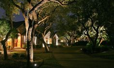 Accent Lighting with LED Landscape Lights on the ground. Different layers of lighting provide an artistic depth. Solar Spot Lights Outdoor, Outdoor Lighting, Solar Powered Spotlight, Accent Lighting, Light Project, New York Street, Landscape Lighting, Sidewalk, Things To Come