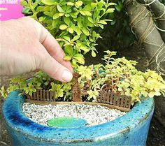 How to Insert Charm into Your Miniature Garden Part II, Patios and Paths | The Mini Garden Guru - Your Miniature Garden Source