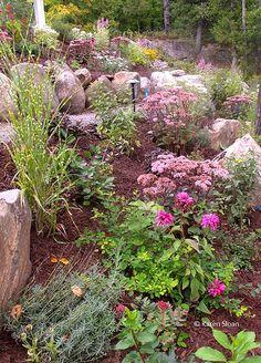 Rosik Garden September bottom tier level