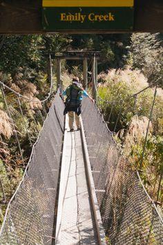 Routeburn Track One of New Zealand's Nine Great Walks Great Walks, South Island, Wine Tasting, Railroad Tracks, New Zealand, Hiking, Tours, Couple, Holiday