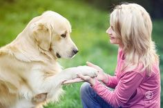 Treinar com amor é treinar com o método do reforço positivo. Veja mais detalhes em blog.petitesofie.com.br