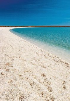 Shell Beach, Western Australia share moments