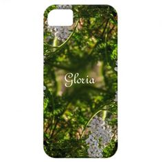 Late Day Glory Fractal Personalized iPhone 5 Cases