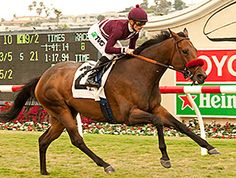 A freshened Tiz Flirtatious made easy work of her four opponents in the $250,000 John C. Mabee Stakes (gr. IIT) Aug. 11, shaking clear in upper stretch to win without much of a challenge on the Del Mar turf.