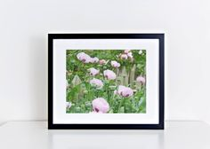 This photo was taken in downtown Raleigh in the spring of 2016. Poppy buds are so unique and cute, in their own way. This photo was taken with a large aperture, making some of the buds in focus and the background a soft blur. The photo is professionally printed on Kodak Professional Supra Endura VC Digital Paper with a lustre coating for a matte finish.    The third photo shows the square crop of this photo.    Please choose your size at checkout:  5x5 in. (12.7 x 12.7 cm)  5x7 in. (12.7 x…