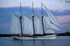 Part of the Tall Ships Challenge® Great Lakes Tour. Last festival was in we look forward to hosting these majestic tall ships again in 2022 Floating In Water, Tug Boats, Tall Ships, Royal Navy, Great Lakes, Sailing Ships, Nautical, Tourism, Bay Canada