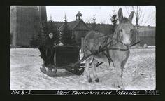 Mary Thompkins, Laddie, and Maude the Donkey (1908-09)