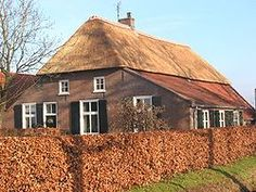 A rieten dak (thatched roof) on a house, like seen on this old farm house (boerderij) is very typical in the Netherlands.