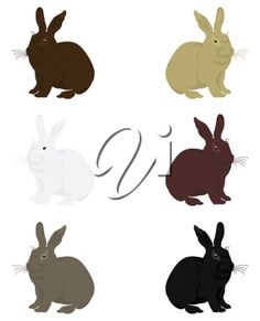 iCLIPART - Clipart Illustration of Six Different Bunny Rabbits