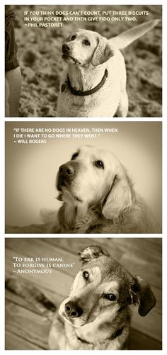 Quotable Canine Collection - from MarkJAsher on Etsy $30 - I think dogs are pretty much the greatest thing in the world.