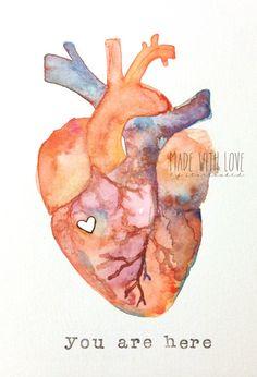 Anatomy of Love | Human Heart Watercolor Print