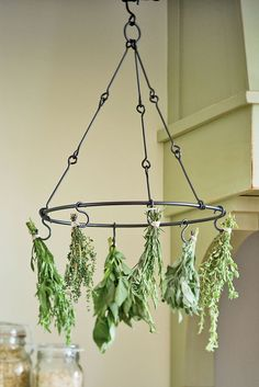 Herb drying rack--perfect for me since I will be growing herbs in my garden. Vegetable Garden, Garden Plants, Indoor Plants, Garden Beds, Herb Plants, Vegetable Storage, Porch Garden, Garden Soil, Medicinal Plants