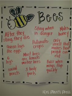 Bees and Math Centers – Primary Press Bees and Math Centers – Primary Press Bee Activities, Classroom Activities, Leadership Activities, Bee Life Cycle, Kindergarten Science, Kindergarten Themes, Preschool Class, Classroom Board, Classroom Decor