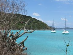 Yost Van Dyke, British Virgin Islands.  Not a postcard.  Our actual pic. One of my fav places on earth.