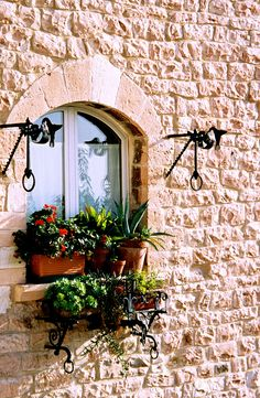 https://flic.kr/p/dKxbV | Window to Assisi | This was a very well-tended window…
