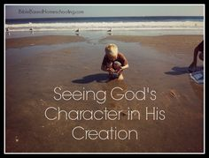 Seeing God's Character in His Creation   Bible Based Homeschooling