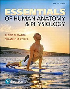 Essentials of Human Anatomy & Physiology 12th Edition by Elaine N. Marieb ISBN-10: 0134395328 ISBN-13: 978-0134395326