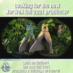 New Norwex Fall 2021 Catalog and Products