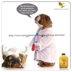 Lol check out the aloe pet range today visit  http://www.verityjpforeverliving.myforever.biz/store