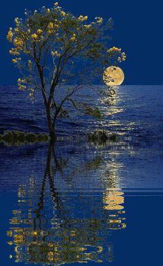 Beautiful Nature Wallpaper, Beautiful Moon, Beautiful Landscapes, Good Night Gif, Good Night Moon, Moon Pictures, Nature Pictures, Beautiful Winter Pictures, Gif Bonito