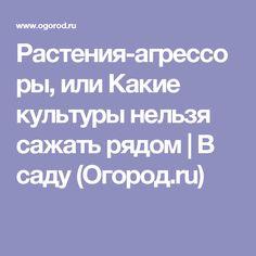 Растения-агрессоры, или Какие культуры нельзя сажать рядом | В саду (Огород.ru)