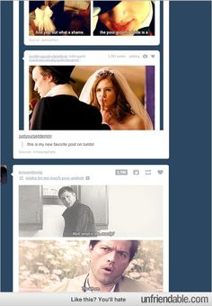Tumblr - Dashboard has ideas of its own