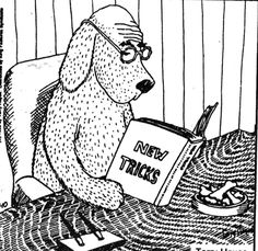 Image result for old dog tricks