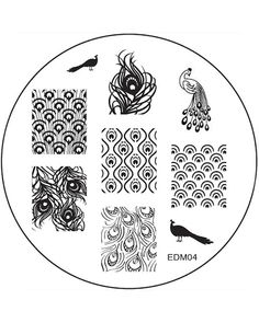 Stamping Plate by Emily de Molly. Image size - Approximately high x wide Plate size - in diameter Plate material - Stainless steel Plate backing - N/A please be careful when using this plate Nail Art Stamping Plates, Nail Plate, Peacock Nails, Indie Makeup, Image Plate, Stainless Steel Plate, Nail Decals, Nail Tools, Nail Tutorials