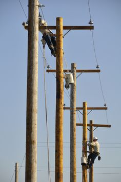 Power Linemen Working on Distribution Poles
