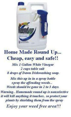 Homemade Weed Killer.....i just used this and the weeds were brown by the end of the day! Love it:-)