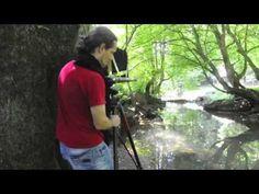 ▶ Wet Plate Collodion Negative & Salt print process / Borut Peterlin - YouTube