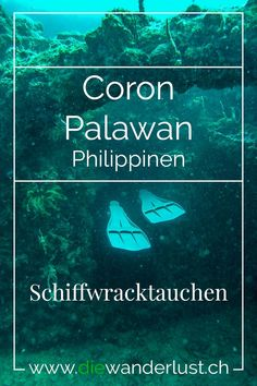Schiffwracktauchen in Coron Palawan Philippinen Coron Palawan, Asia, Wanderlust, Travel, Diving School, Budget Travel, Tour Operator, Singapore, Travel Report
