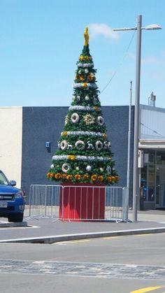 Giant Christmas tree in Taradale Hawke's Bay ♥ Scenery, Christmas Tree, Holiday Decor, Home Decor, Teal Christmas Tree, Landscape, Holiday Tree, Paisajes, Xmas Tree