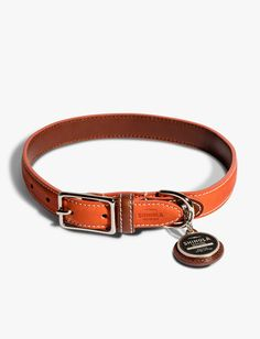 A collar made for the every dog with an everyday spirit - this collar was created in a collaboration between Bruce Weber and Shinola.  Made of vegetable-tanned Horween leather with an exposed hint of color on the side, and hardware constructed of solid brass. Handcrafted at Real Leather Creations in Largo, Florida.