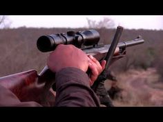 Buffalo hunting - YouTube Two Steps From Hell, Music Library, Music Publishing, Buffalo, Hunting, Songs, Youtube, Water Buffalo, Youtube Movies